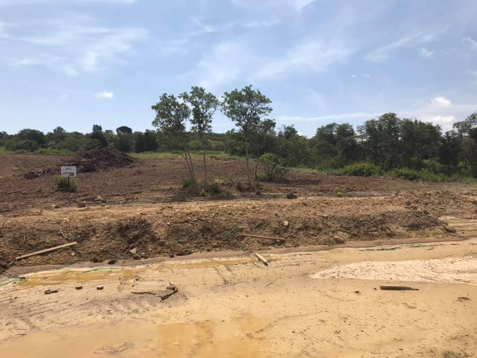Land Clearing | Side View